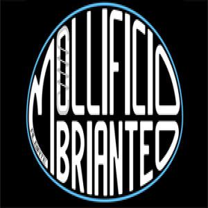 logo_Mollificio
